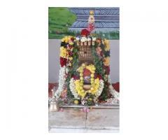 அருள்மிகு தன்னாசி அய்யன் கோவில் திருக்கோயில் பச்சாபாளையம்